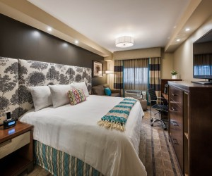 Executive, One King Bed Room